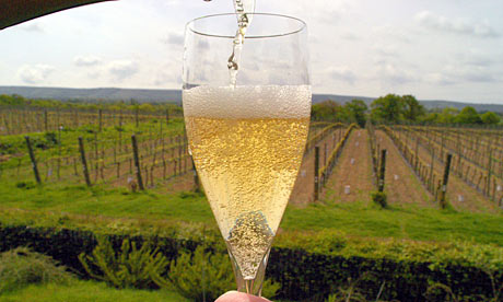 English-champagne-from-gr-007